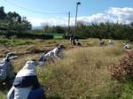 201025草刈り.jpg